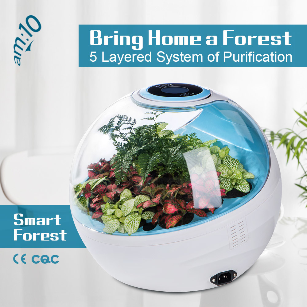 China Soilless Smart-Forest Air Cleaner with Activated Carbon, HEPA ...