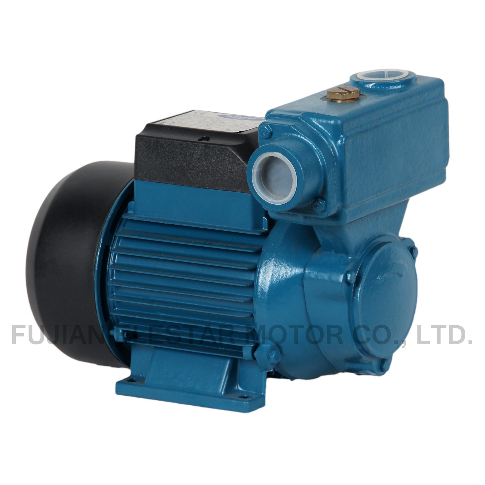 China TPS Series Copper Wire Brss Impeller Water Pump Motor Photos ...