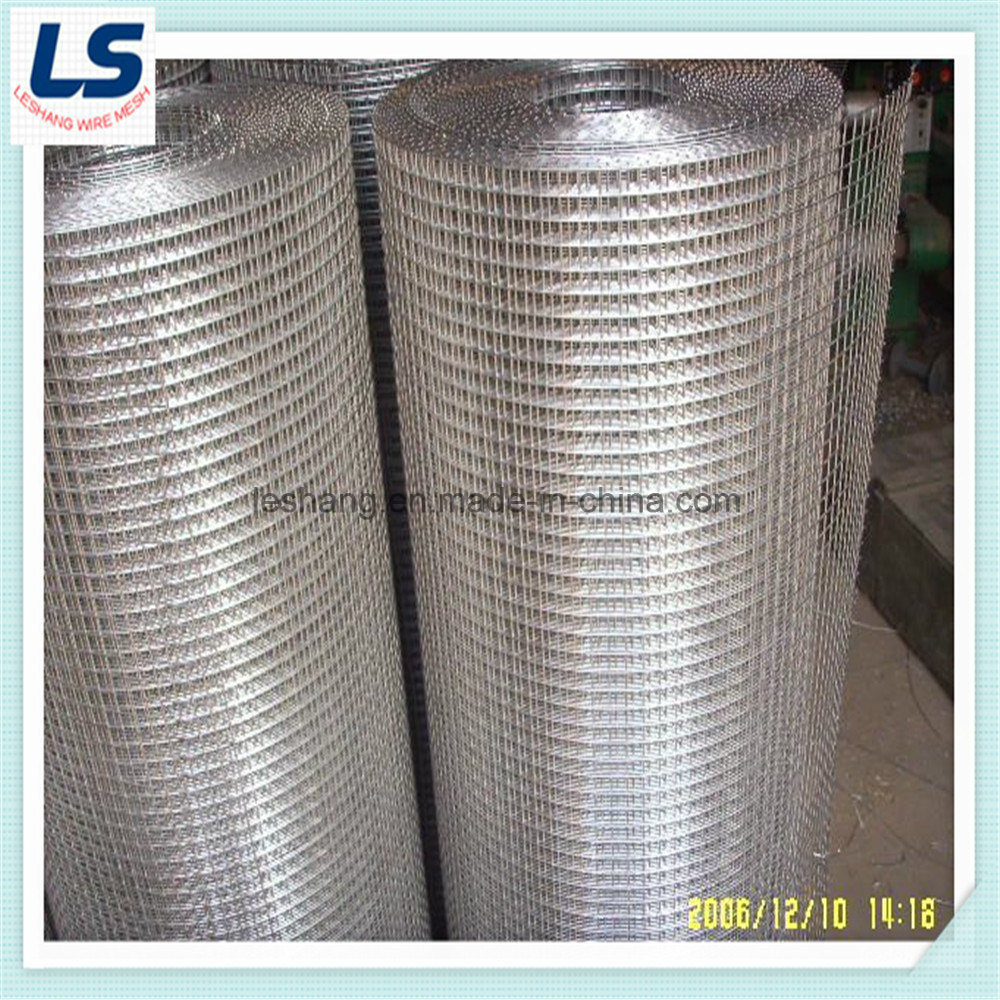 China High Quality Welded Wire Mesh - China Welded Wire Mesh, Wire Mesh