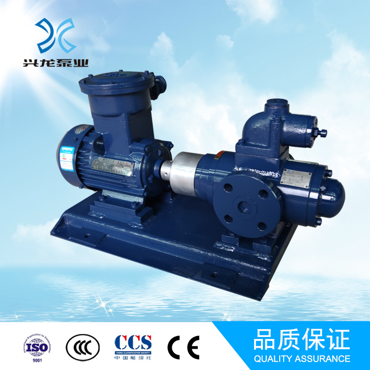 Bitume Pump/Oil Pump/High Pressure Pump/Chemical Pump pictures & photos