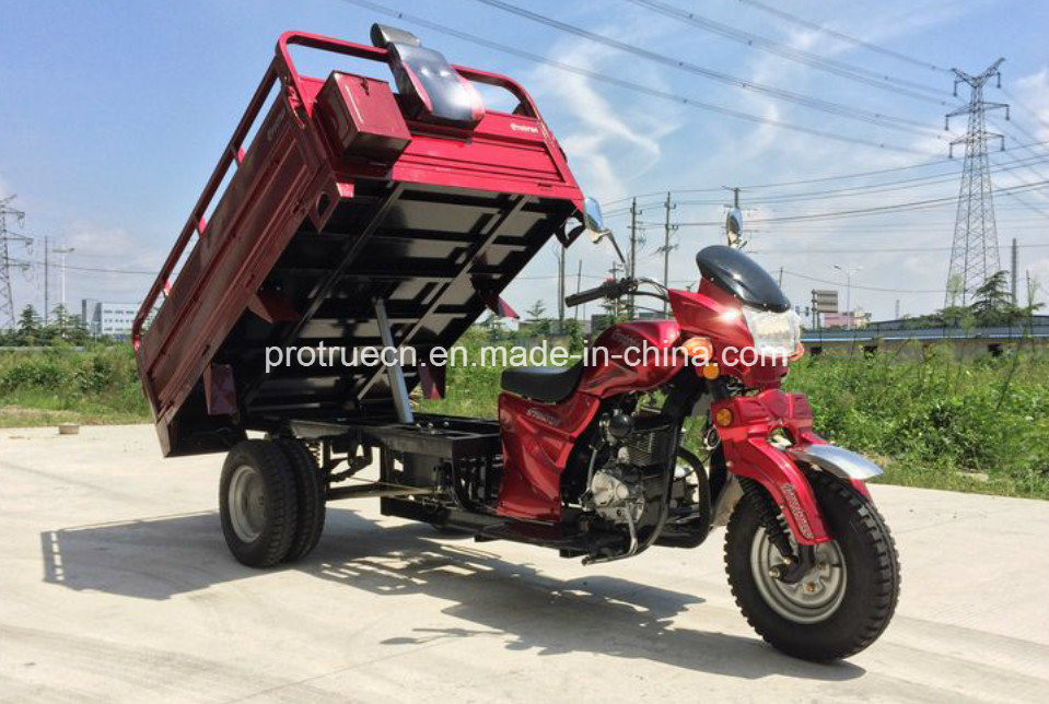 Double Shock Three Wheel Cargo Tricycle with Rear Double Tyre pictures & photos