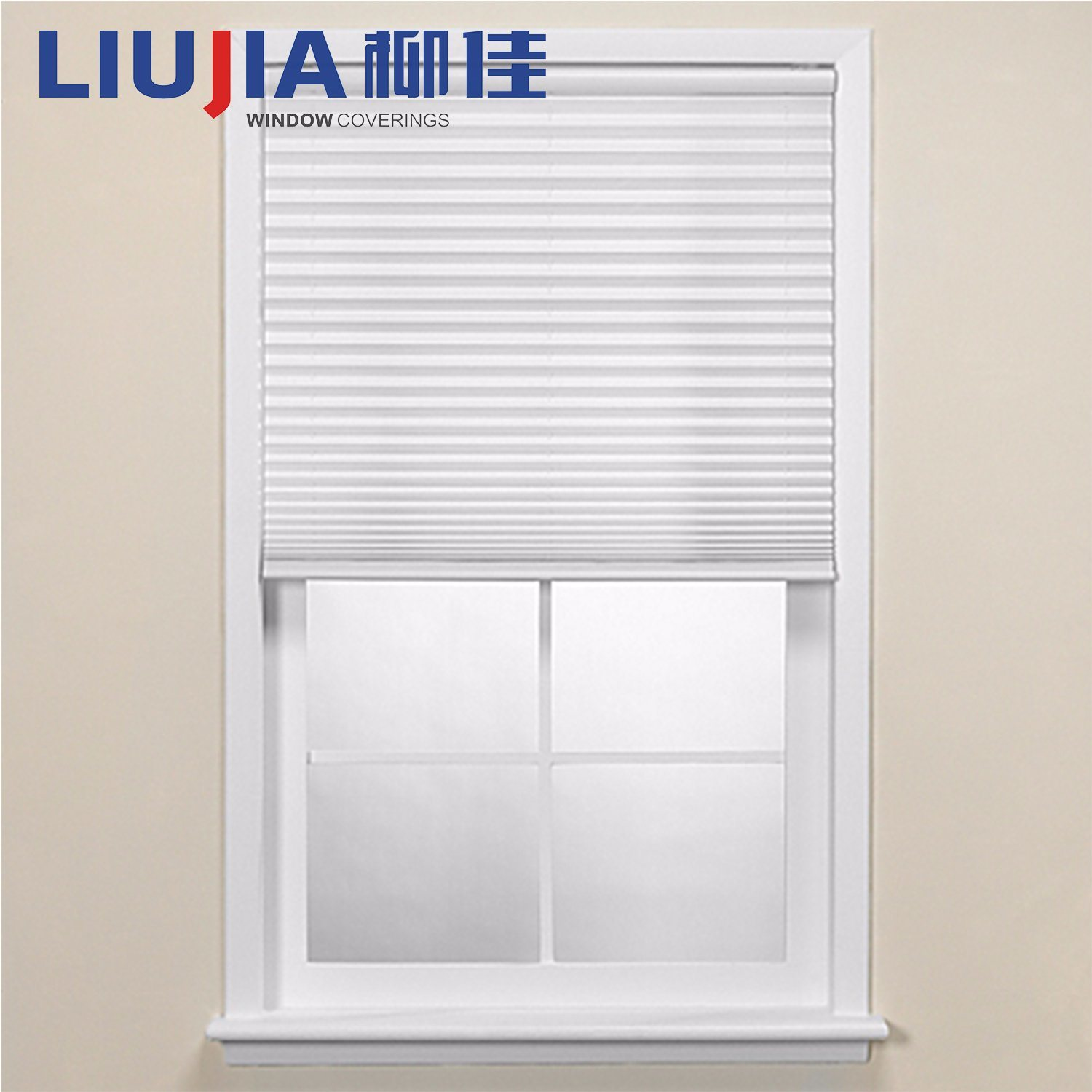 China Home Decor Pleated Blackout Blinds