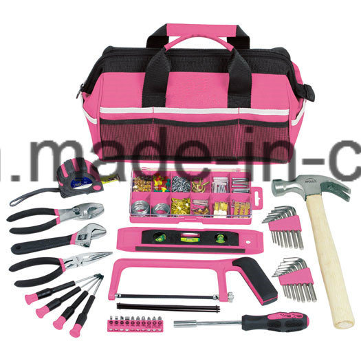 201PCS Professional Pink Mechanical Tool Bag Set (FY201B) pictures & photos