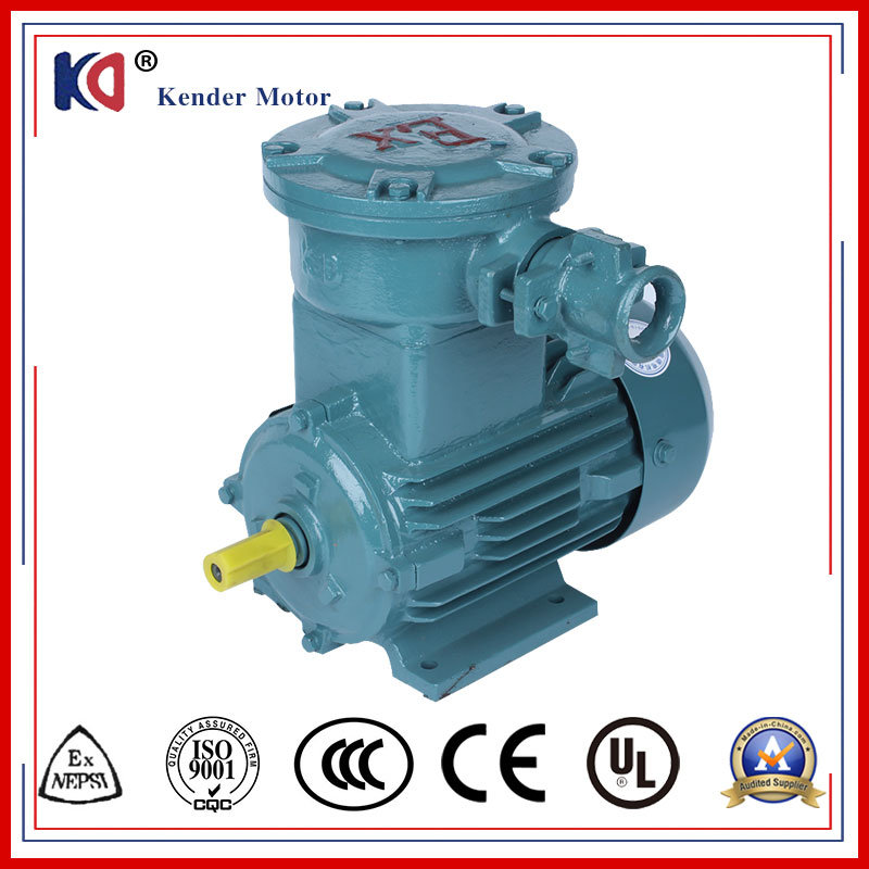 China Three Phase Copper Wire Explosion Proof 0.75kw Electric Motors ...