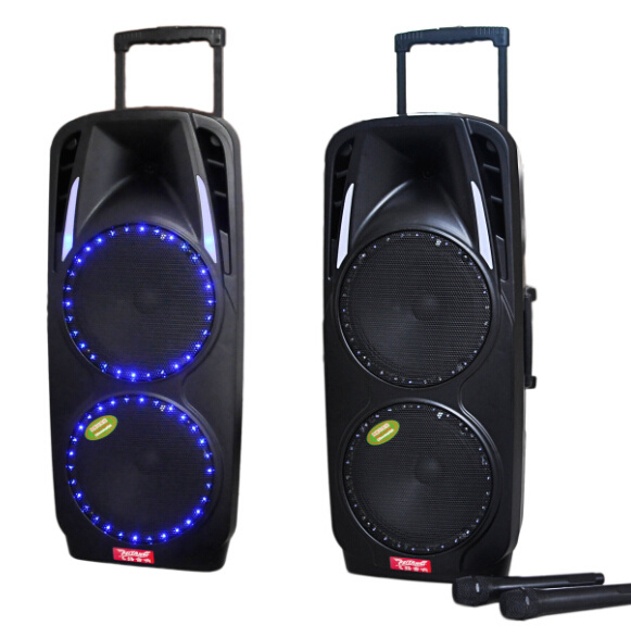 Double 10′′ Professional Stag Speaker with Colorful Light F73 pictures & photos
