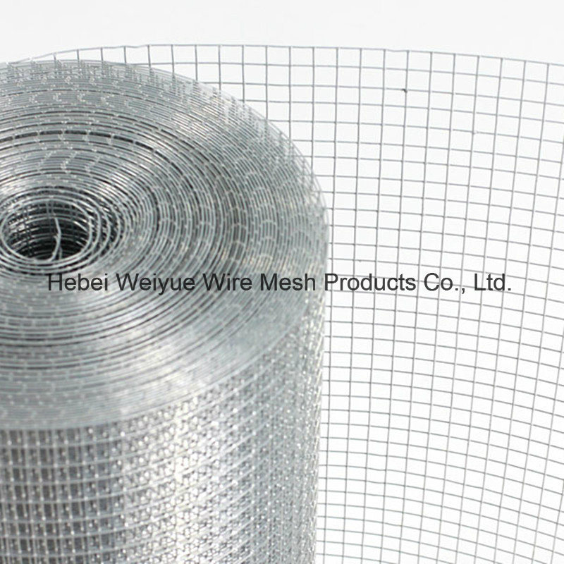 China Galvanized Stainless Steel Welded Wire Mesh Used for ...