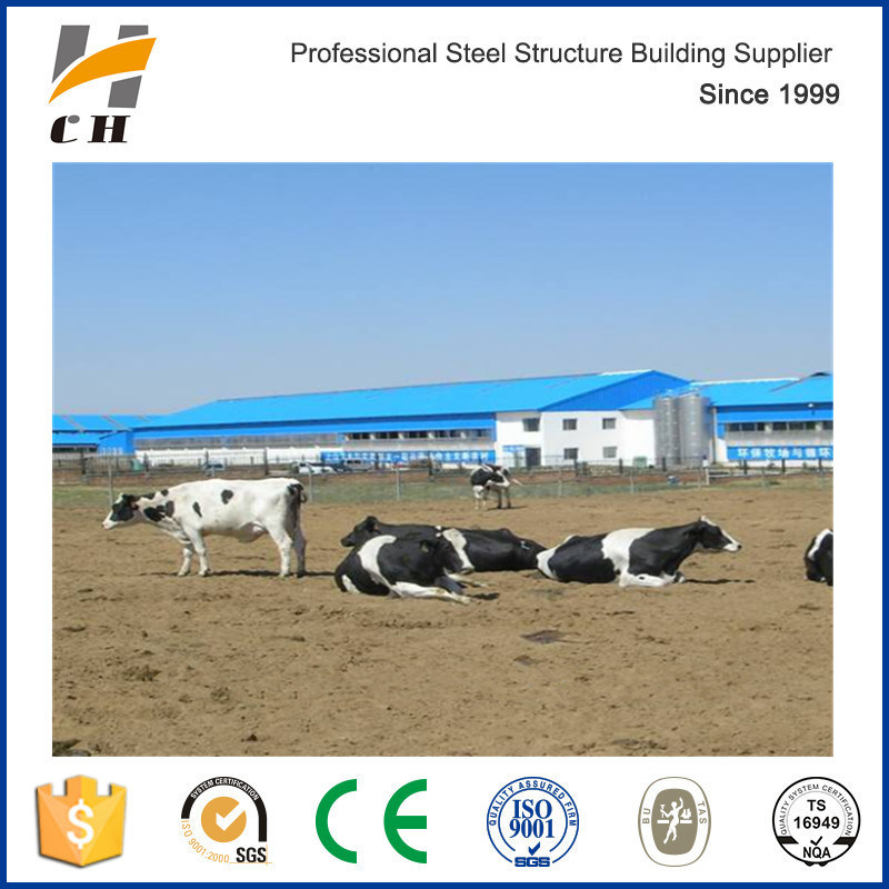China Dairy Shed Dairy Shed Manufacturers Suppliers Price Made In China Com