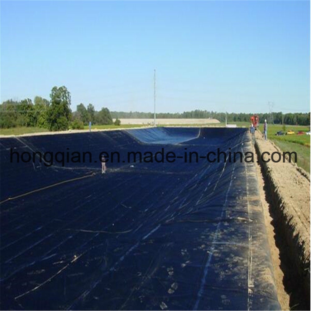 China 15mm hdpeldpelldpeeva geomembranegeo membrane for fish 15mm hdpeldpelldpeeva geomembranegeo membrane for fishpondshrimplandfillagriculture supply manufacturer company factory supplier price publicscrutiny Choice Image