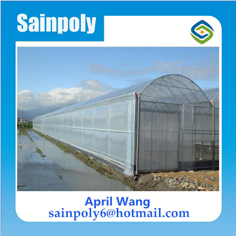 Low Price and Easily Installed Plastic-Film Multi-Span Greenhouse for Hydroponic