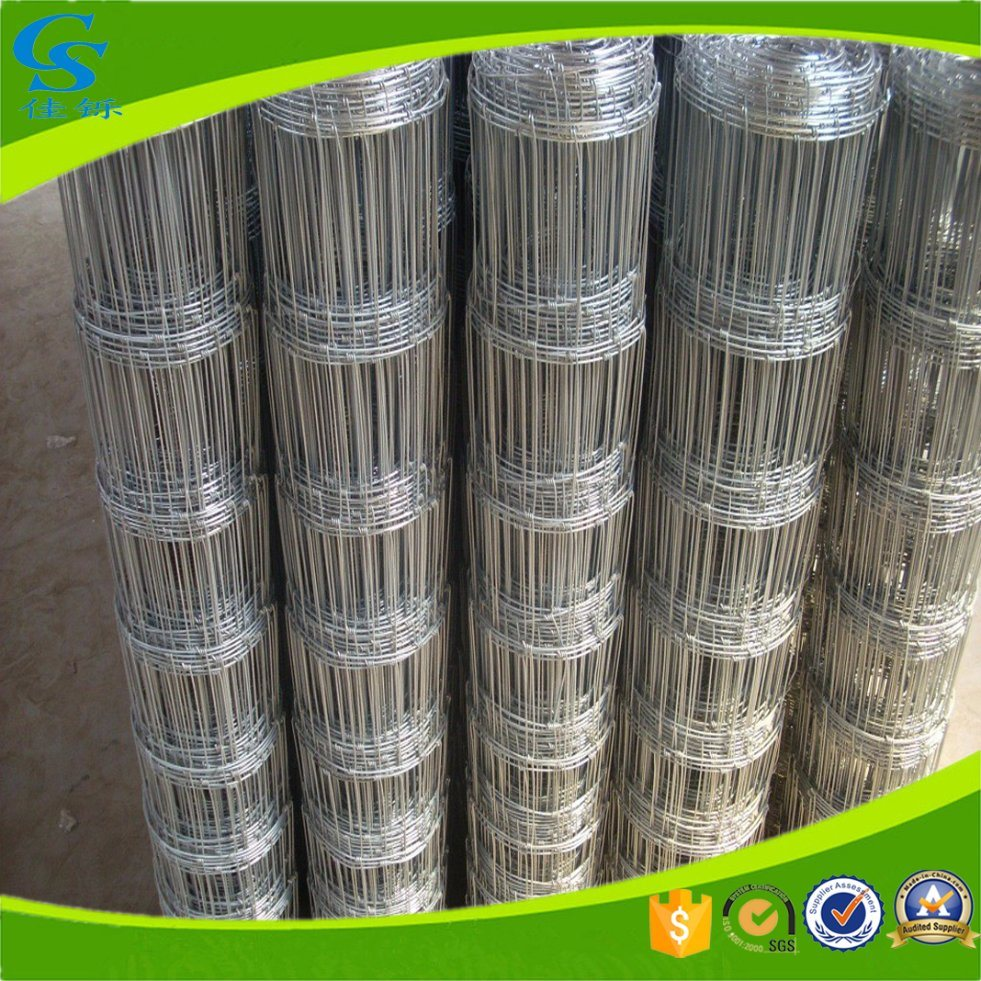 China Hot Dipped Galvanized Wire Mesh Fence Field Fence - China ...