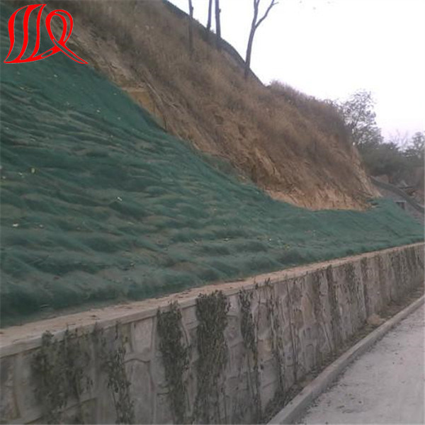 Plastic 3D Geomat (Erosion geomat) for Slope pictures & photos