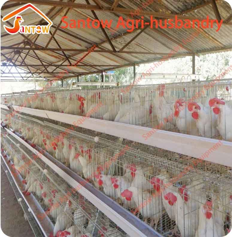 China Q235 Low Carbon Steel Chicken Layers Cage High