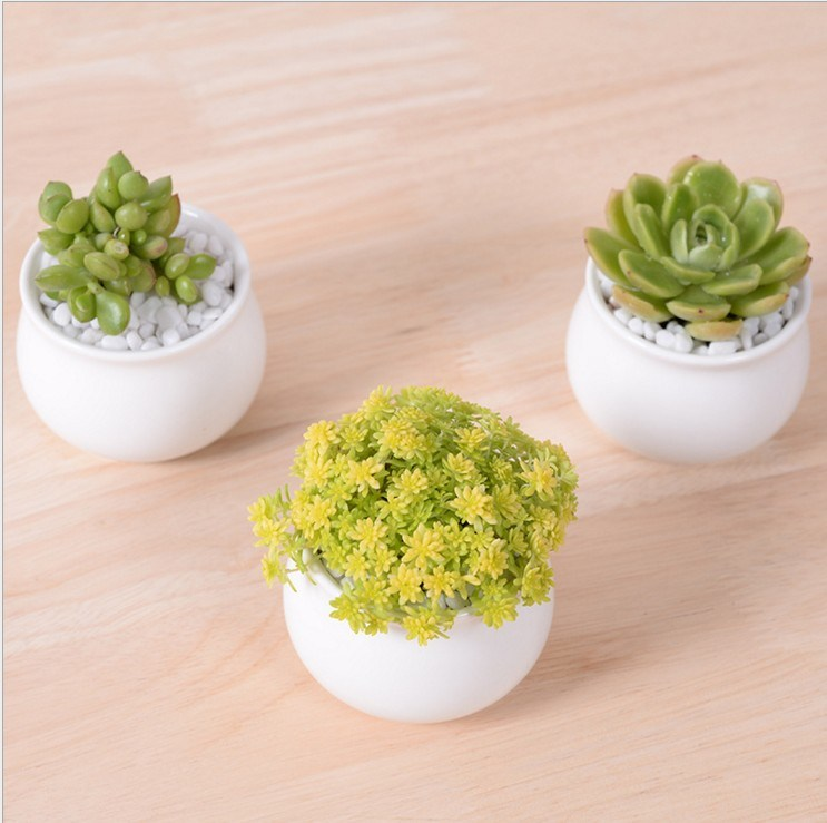 Ceramic Square White Flowerpot pictures & photos