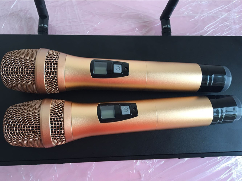PRO Audio UHF Wireless Microphone for Conference/Show/Karaoke pictures & photos