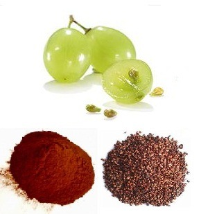 Factory Supply Natural Grape Seed Plant Extract pictures & photos