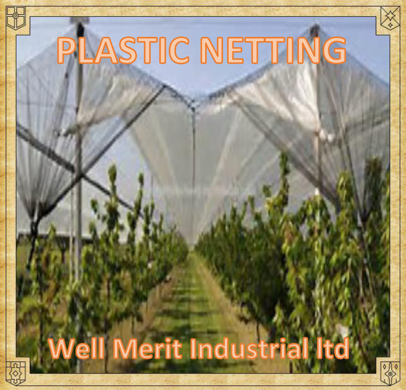 [Hot Item] Plastic Nets-Anti Hail Netting/Anti Insect Nets/Hail Protection  Netting for Fruit and Vegetable