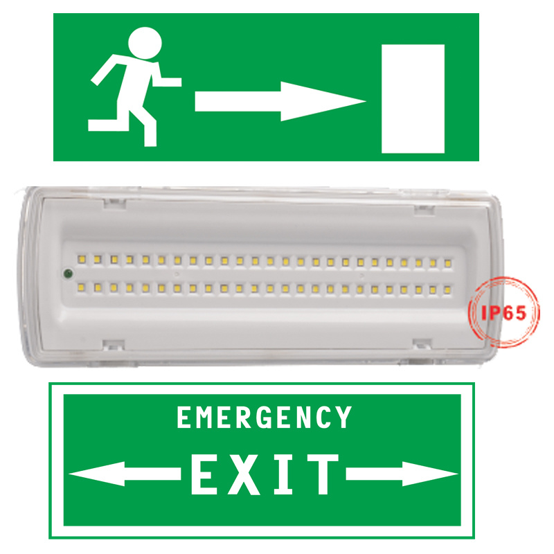 1038 Plastic Housing LED Rechargeable Emergency Exit Bulkhead Light China with Ni-CD Battery for Exit Sign pictures & photos