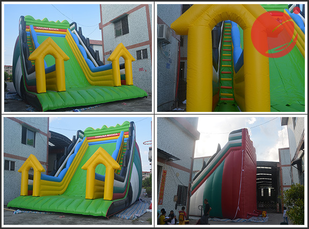 2018 Hot Summer Inflatable Water Slide Park with Snowman Surfing (T4-234) pictures & photos