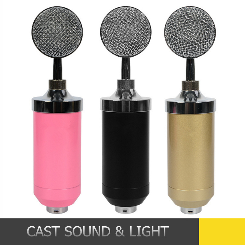 Professional Condenser Studio Microphone with Shock Mount Holder pictures & photos