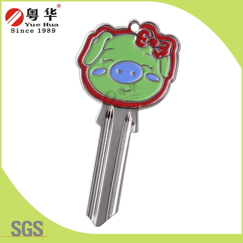3D Blank Keys pictures & photos