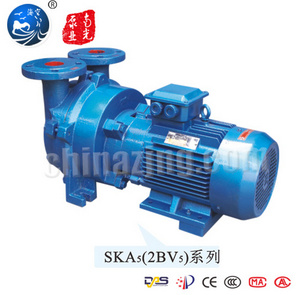 Ska 2BV Series Liquid Ring Vacuum Pump