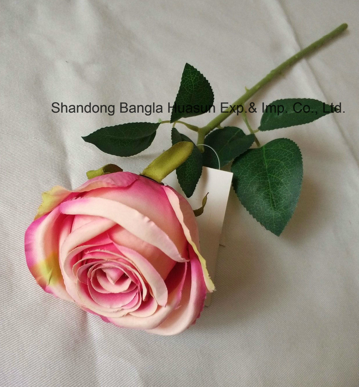 China Artificial Silk Flower Single Rose Beauty Colour For
