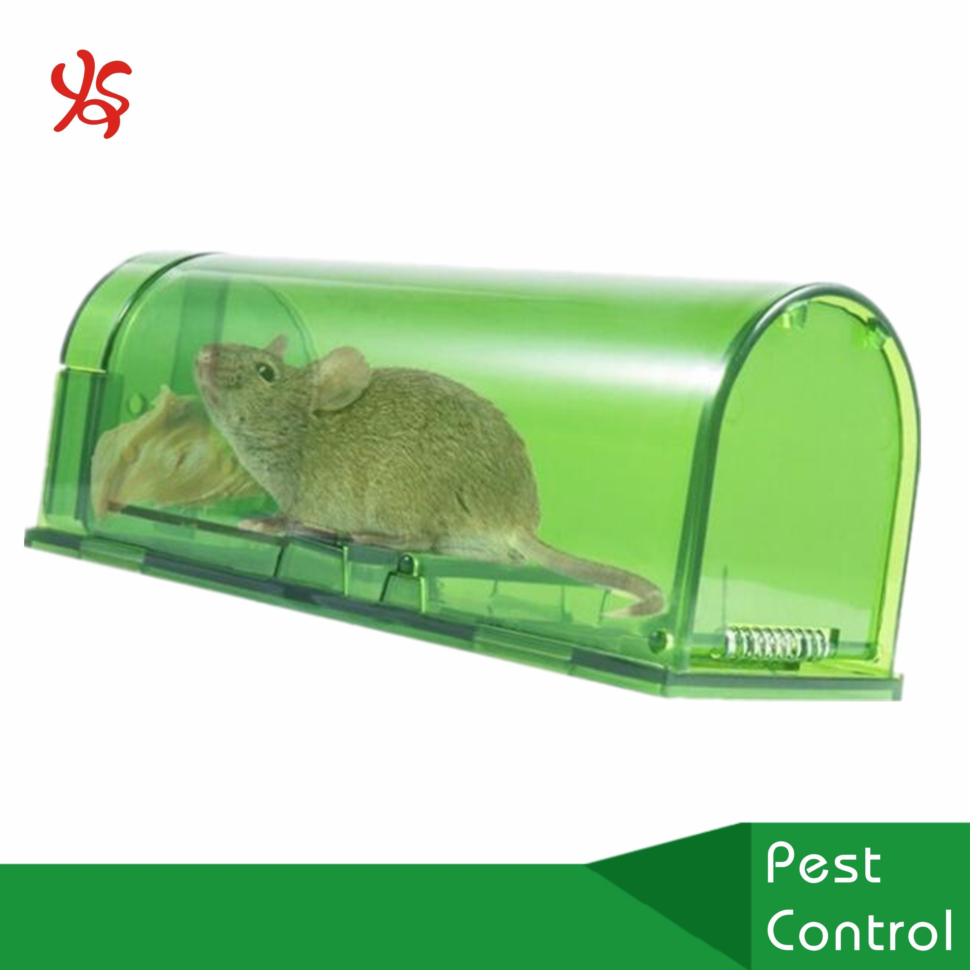 [Hot Item] Plastic Live Catch Mouse Mice Rat Tunnel Trap
