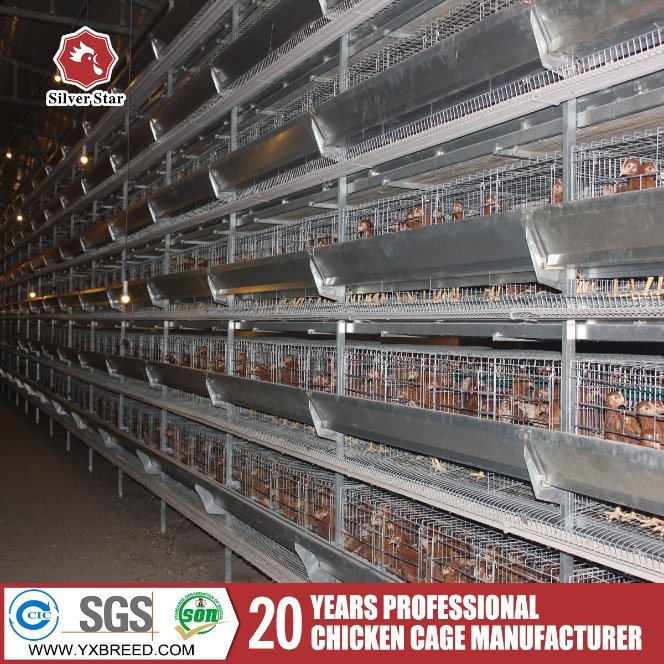 H Type 4-Tier Laying Hen Battery Cages for Chicken Farming