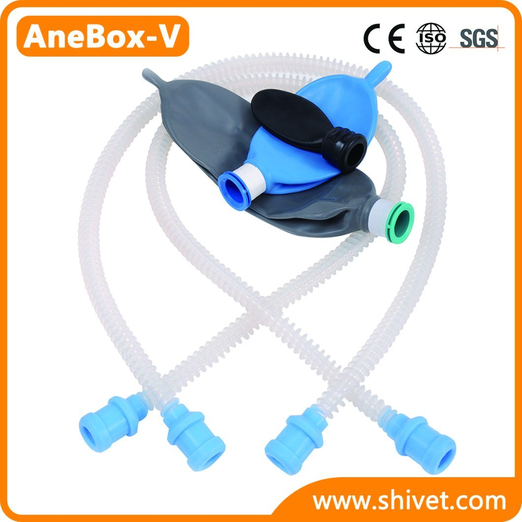 Veterinary Anesthesia Machine Animal Anesthesia Machine (AneBox-V)