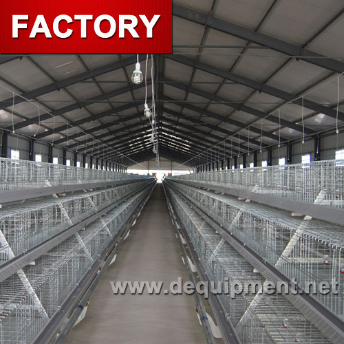 China Layer Egg Chicken Cage Poultry Farm House Design