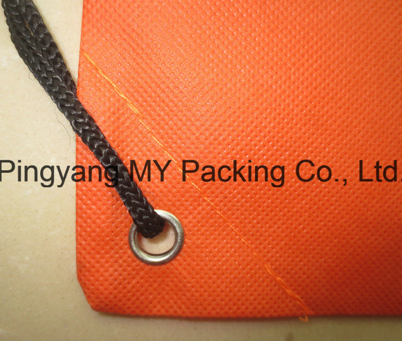 Professional Manufacturer of PP Non Woven Drawstring Backpack Bag