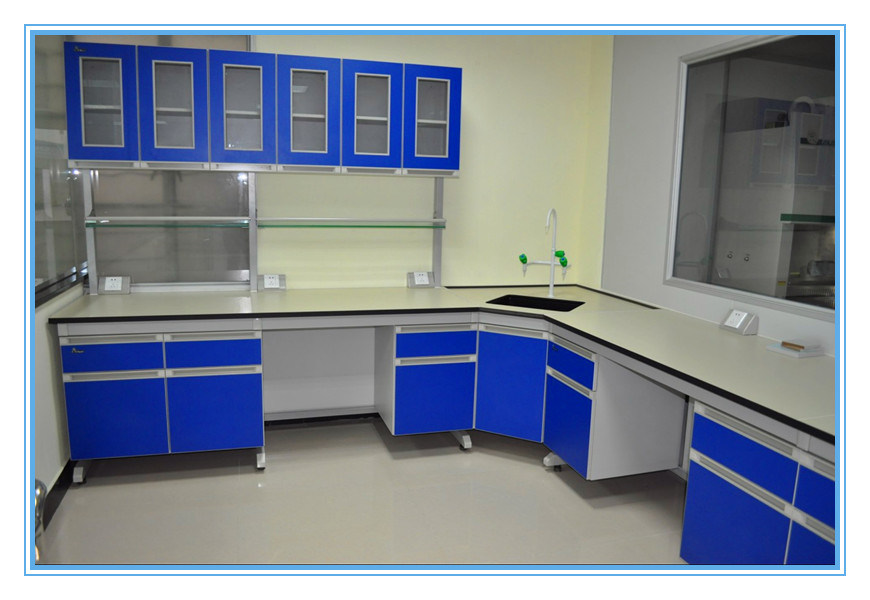 China Microbiology Laboratory Wall Mounted Bench With