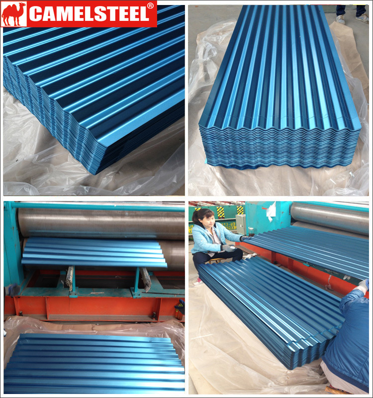 Coated Color Metal Roof Sheets From Golden Supplier Camelsteel pictures & photos