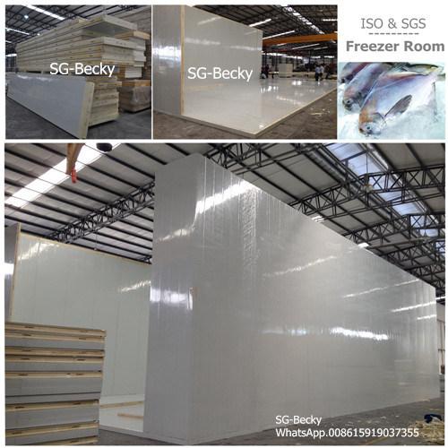 China Polyurethane Panels Assembly Freezer Room Cold Storage for
