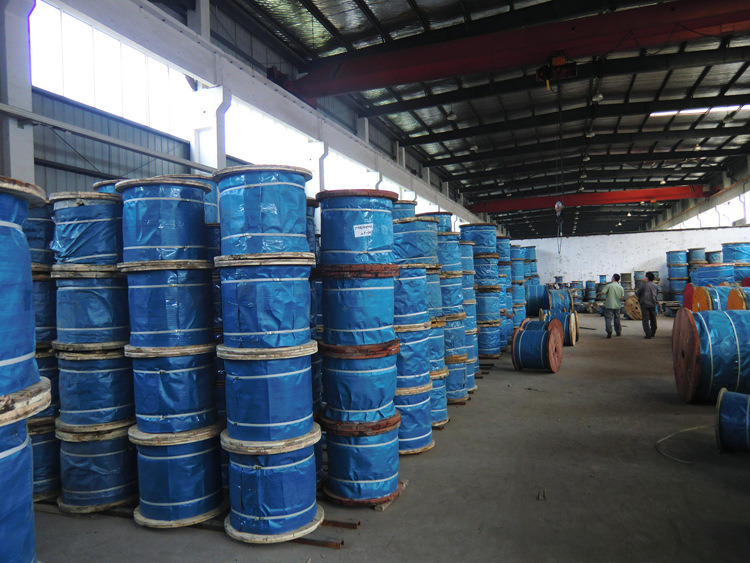 China Ungalvanized One Blue Strand Steel Wire Rope 6X37+FC Photos ...