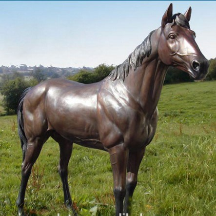Bronze Life Size Horse Statue Animal Sculpture For Garden Decoration