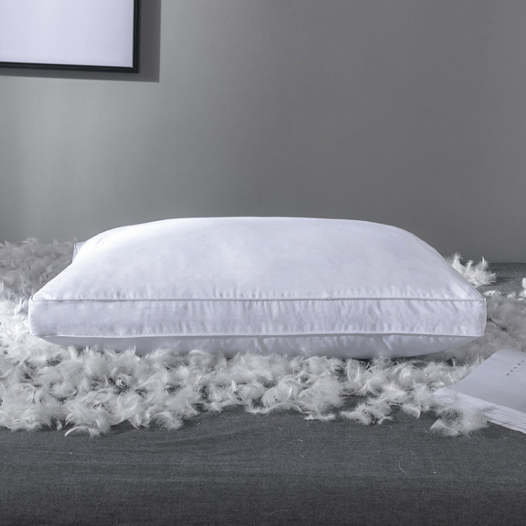 Luxury White Down And Feather Pillow
