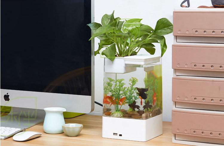 Acrylic Fish Tank Ecological Aquarium