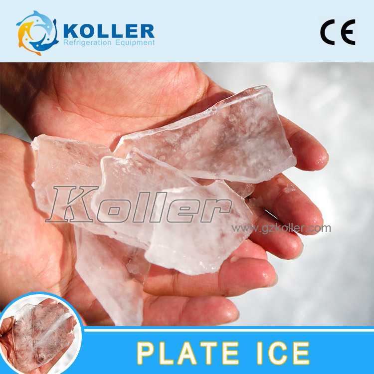 Koller Plate Ice Machine for Fishery, Edible Plate Ice, Ice Machine 3tpd pictures & photos