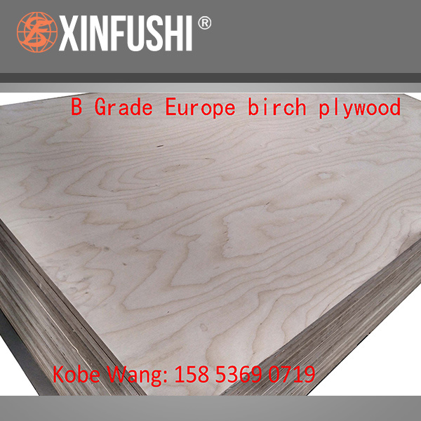 China Baltic Birch Plywood Russian For Cabi