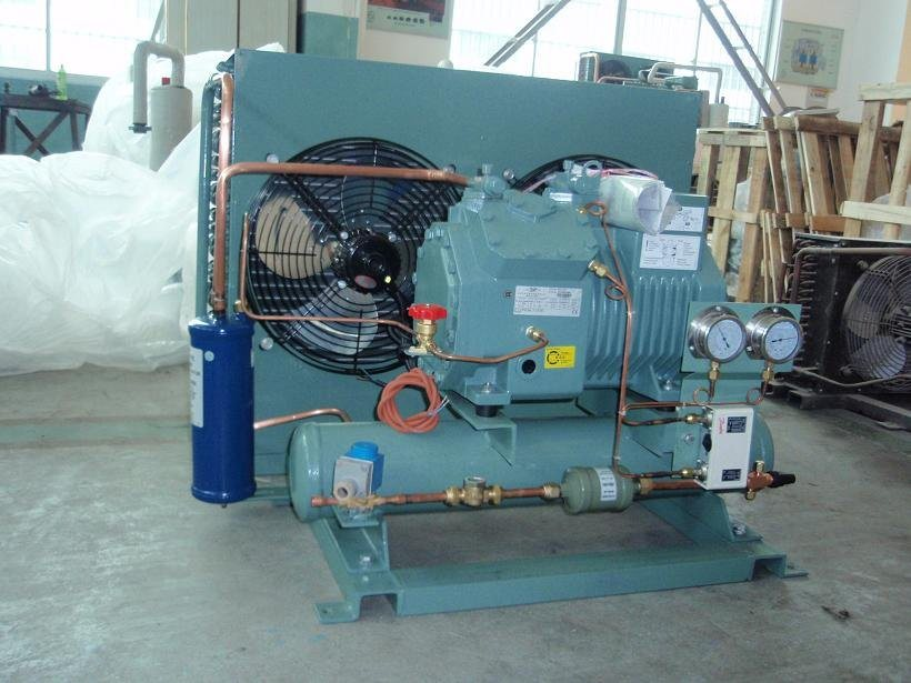 Bitzer Compressor Condensing Unit pictures & photos