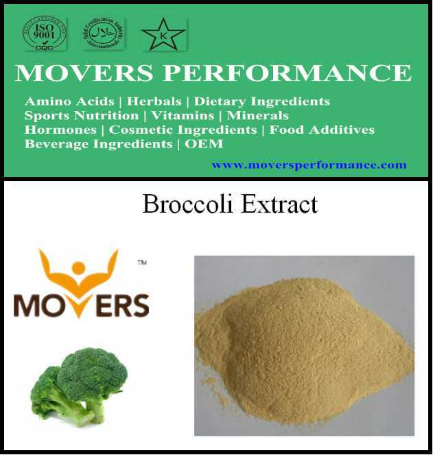 Supply Natural Organic Plant Extract Broccoli Extract