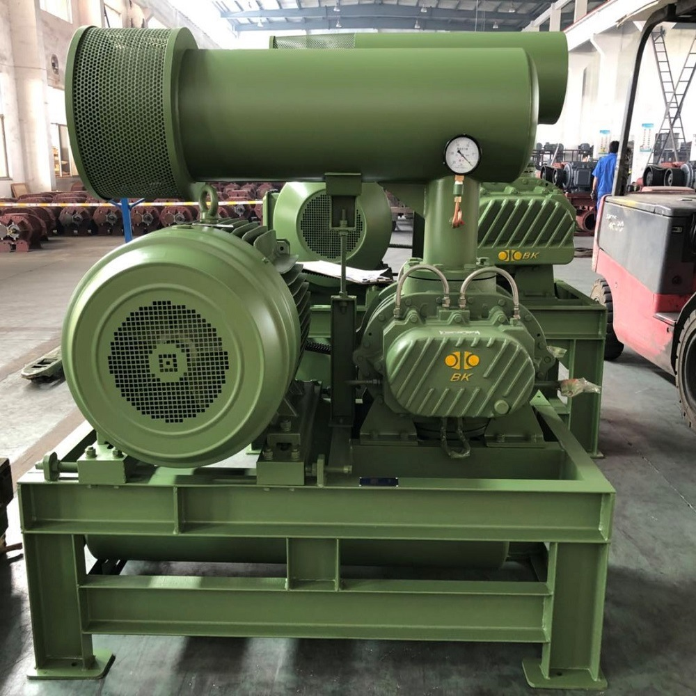 Water Cooling Roots Blower Bkw7011 for Aeration pictures & photos
