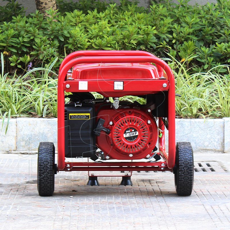 Bison (China) BS3500p (M) 2.8kw 2.8kVA Household Long Run Time Hot Type King Power Gasoline Generator Parts pictures & photos