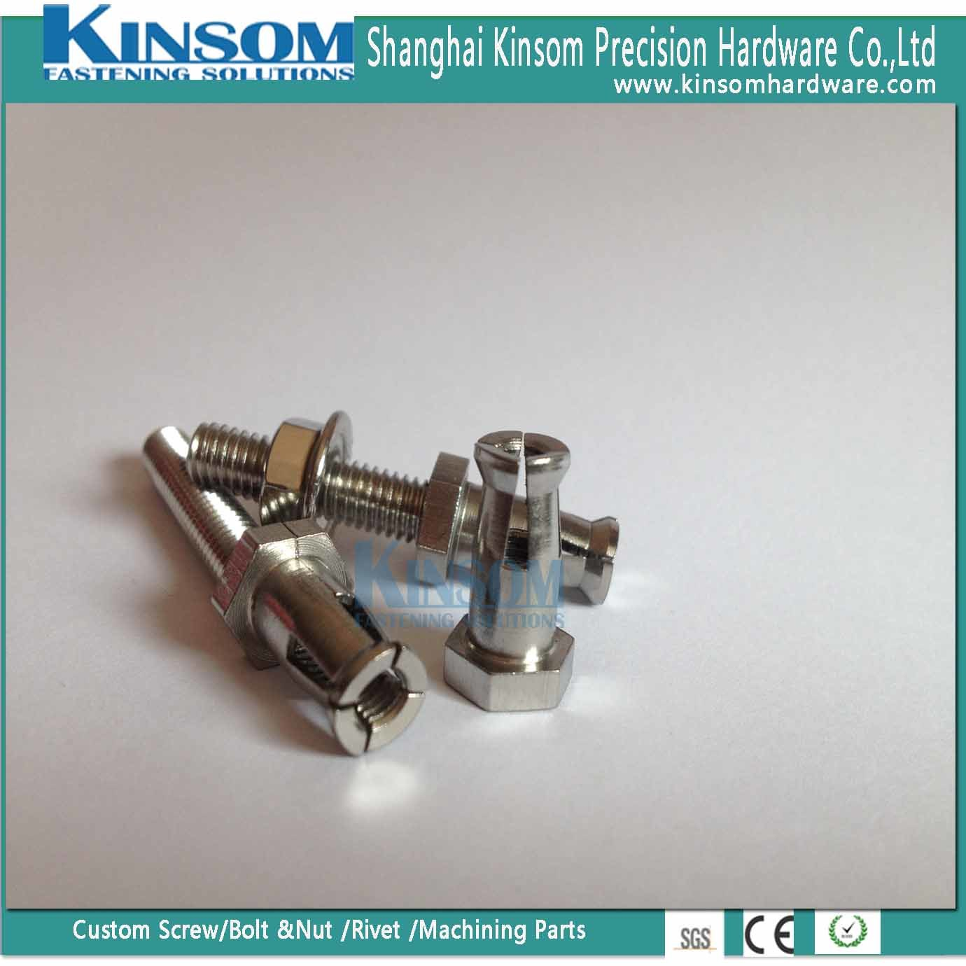 Stainless Steel Expansion Undercut Bolt and Hex Flange Nut of Assembly Parts pictures & photos