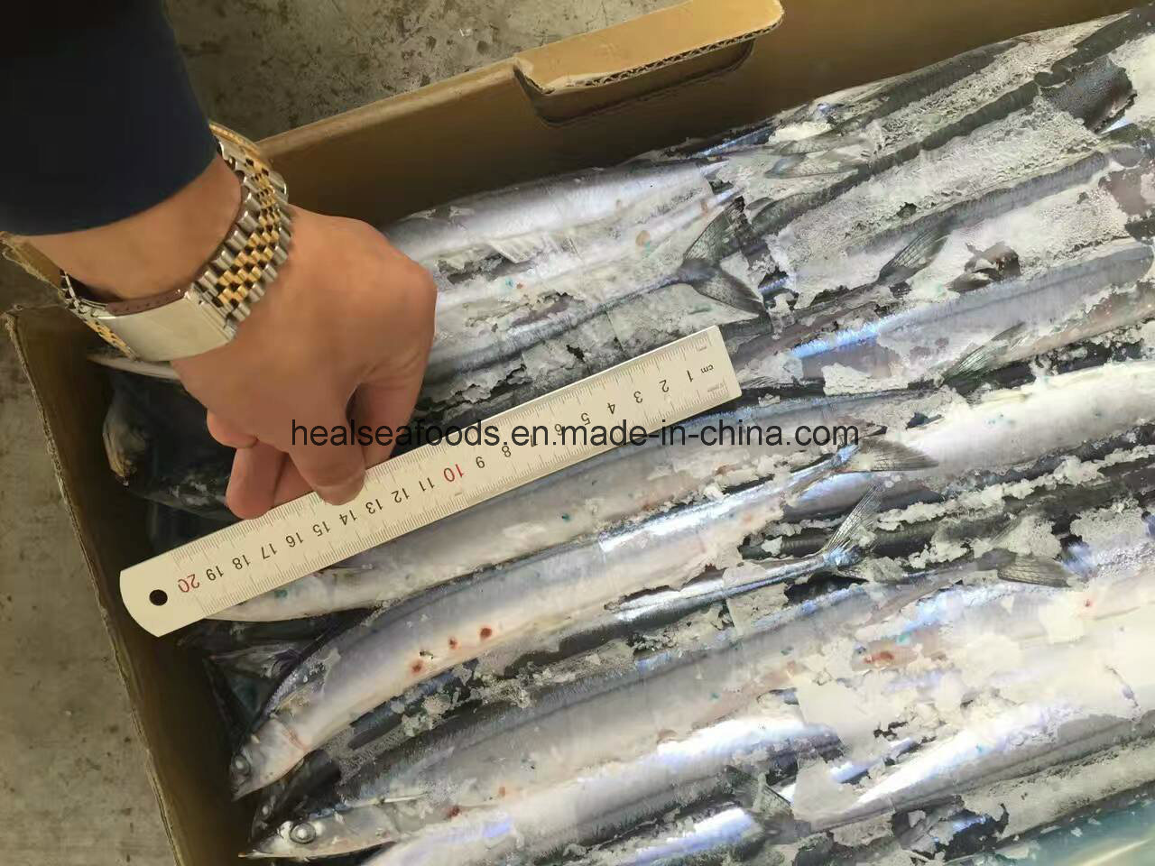 Best Quality Fish for Thailand Frozen Pacific Saury pictures & photos