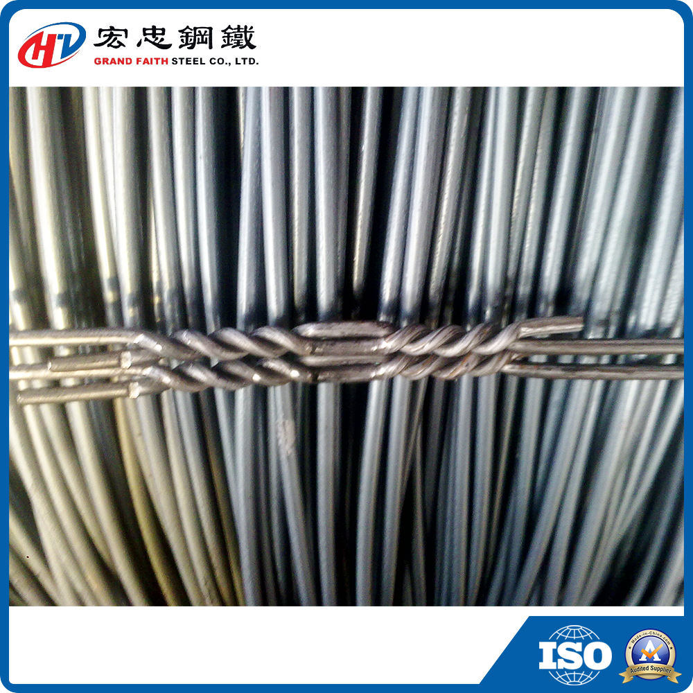 China Steel Wire Rod in Coils - China Wire Rod, Wire Rods