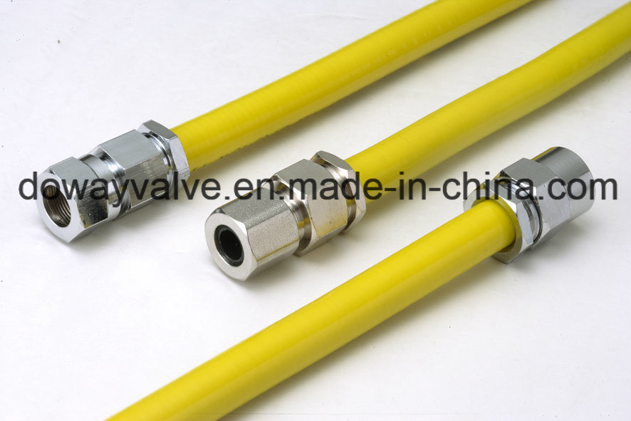Good Price for Nature Gas Hose pictures & photos
