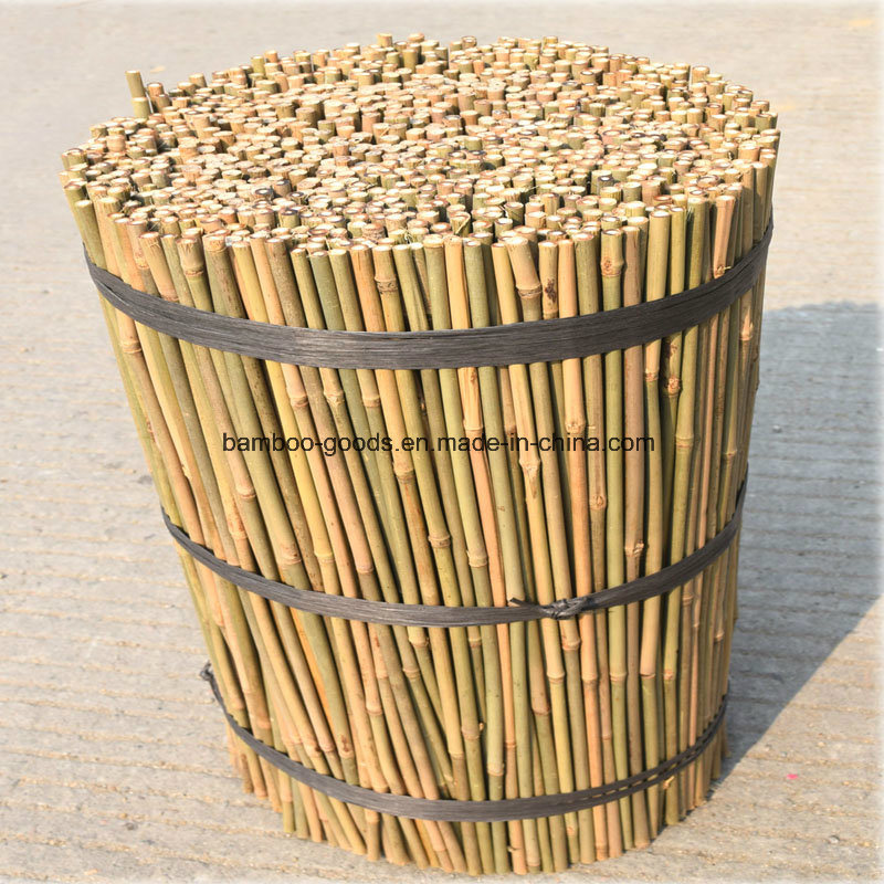 Bamboo Flower sticks (BFS001) pictures & photos