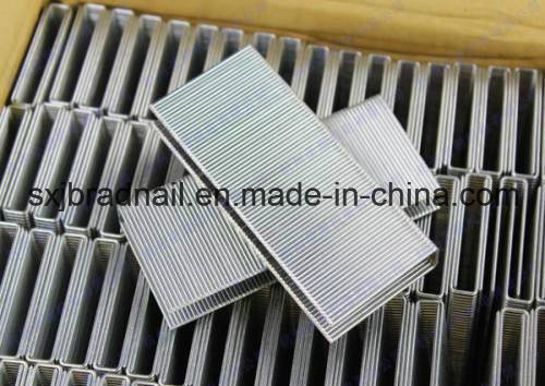 2016 New Hot Selling Silver Wire Staple